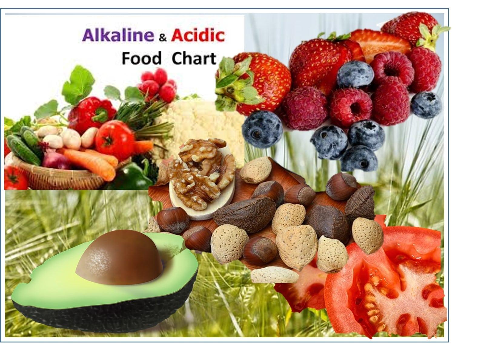 Nutrition Alkaline 2