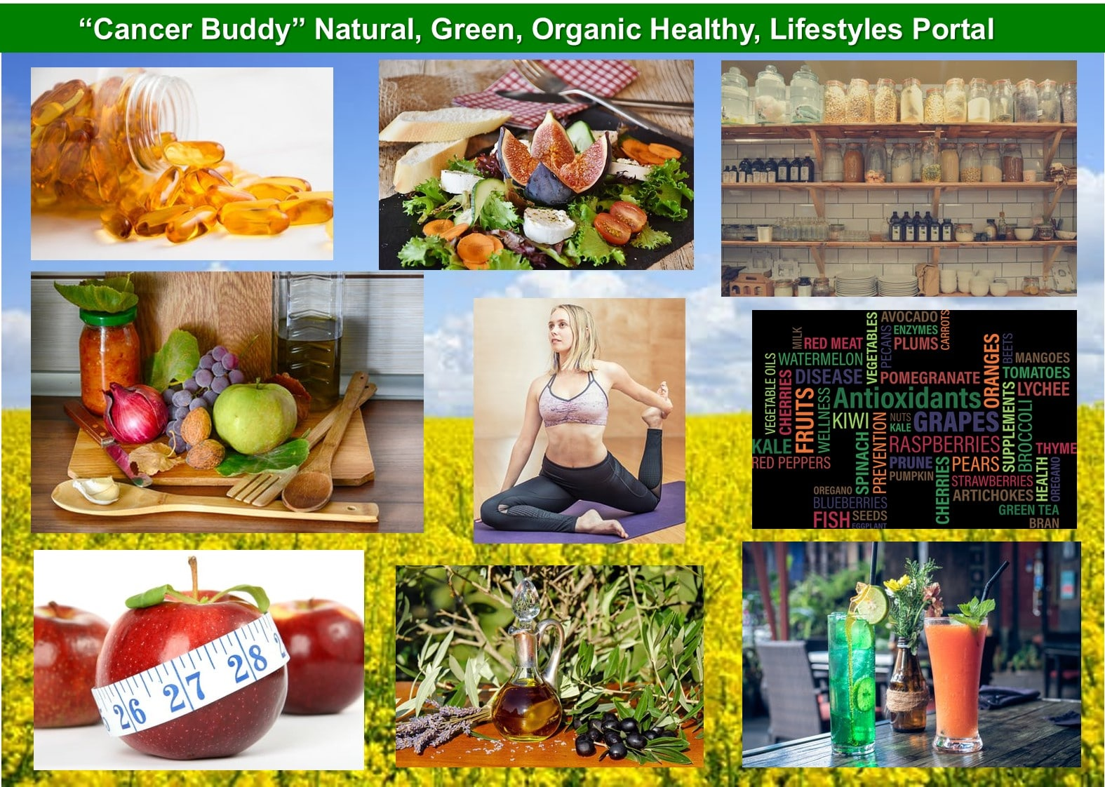 Green Organic healthy lifestyles Portal
